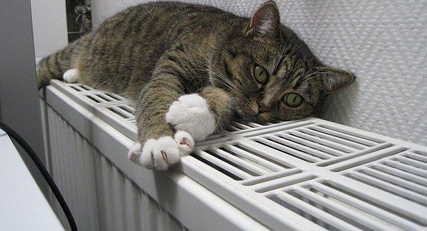 У Кличка розповіли, коли дадуть тепло киянам