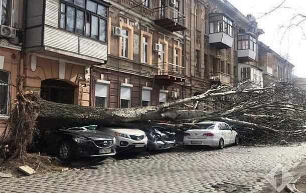 Фото — Ураган в Украине