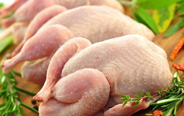 Украинское мясо птицы стало чаще продаваться в Евросоюз