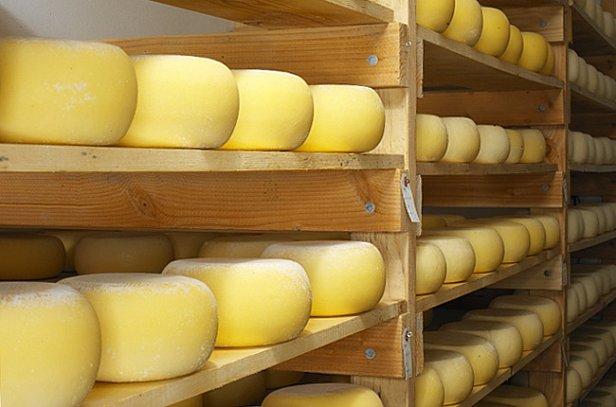 Экспорт украинских сыров упал в четыре раза