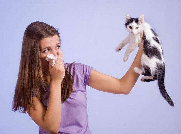 фото - ученые про кошек