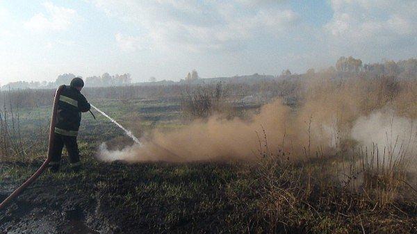 ГСЧС: на Киевщине спасатели продолжают тушить  29,9 га тлеющих торфяников