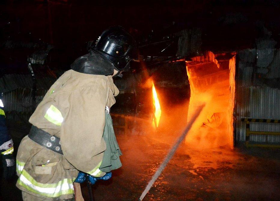 """Пожар под Одессой: маслоперерабатывающий завод """"Дельта Вильмар"""" горел всю ночь"""