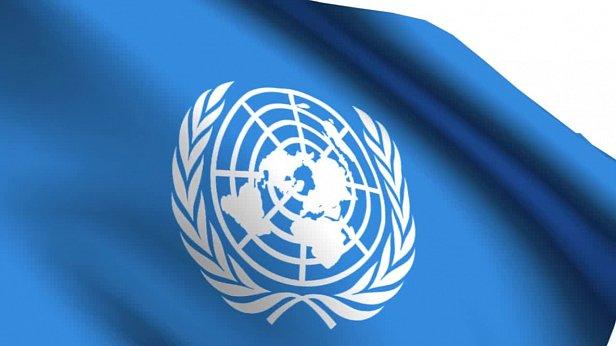 Представитель Украины: ООН поможет разминировать Донбасс