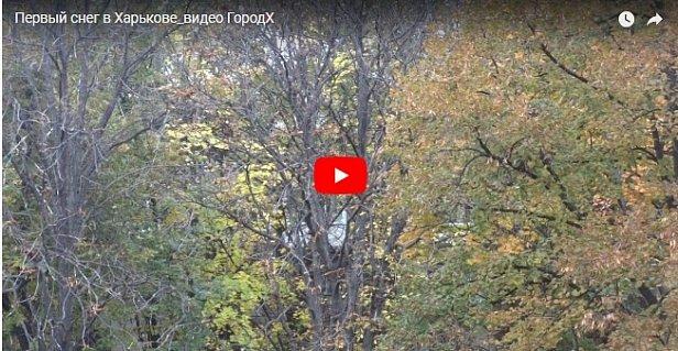 Настоящая зима пришла в Харьков (видео)
