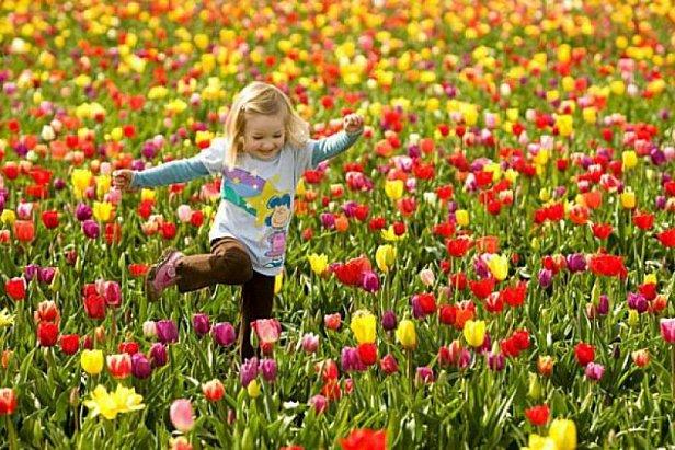 Рада предлагает отменить майские праздники