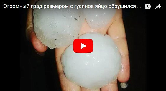 Под Житомиром выпал аномально крупный град размером с гусиное яйцо (видео)