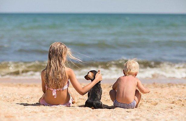 Круглогодичный курорт готов к летнему оздоровительному сезону