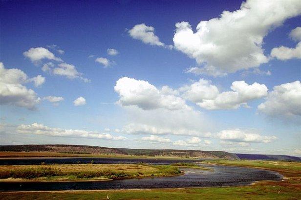 Погода на завтра: в Украине прохладнее, в Полтаве, Крыму и Карпатах дожди