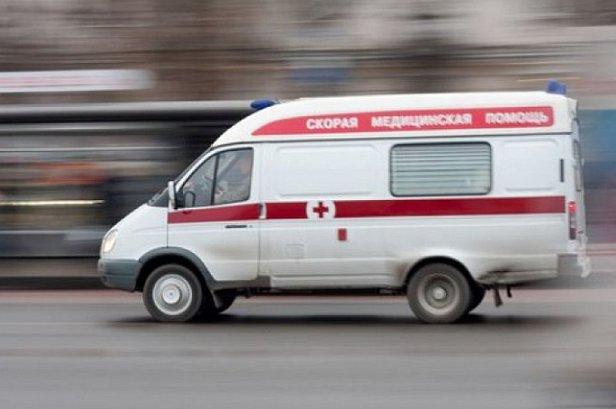 В Киеве бойцовская собака покалечила прохожего: фото