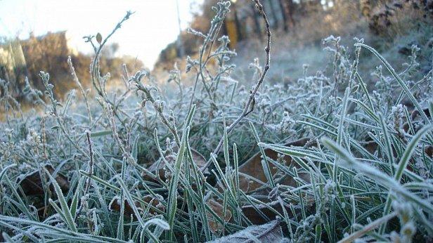 Где будут заморозки: синоптики дали уточненный прогноз