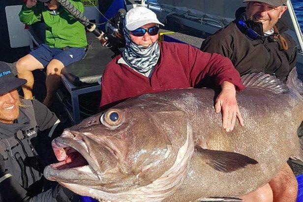 В Австралии пенсионерка поймала огромного морского окуня (видео)