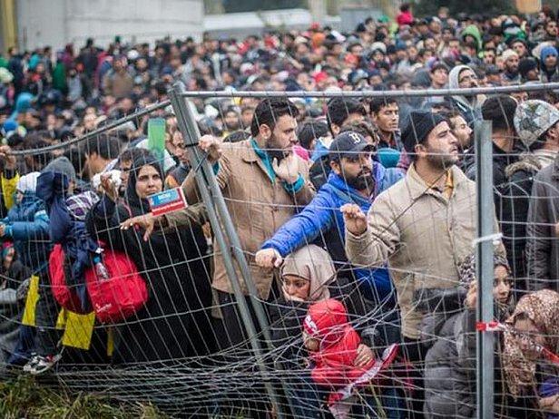 Словения ограничила пропуск мигрантов через свою территорию