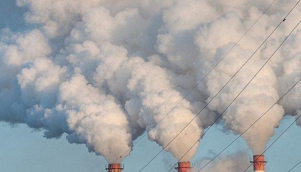Земле предрекли климатический коллапс: все подробности
