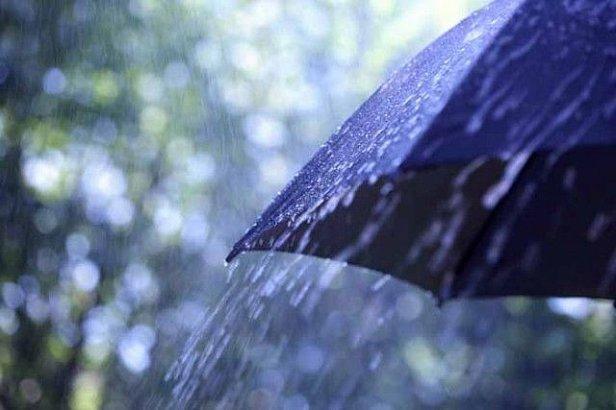 В субботу в Украине ожидается до 33 градусов жары, местами дожди и грозы