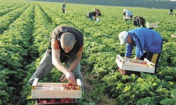 Работа в Польше: зарплаты заробитчан резко изменятся
