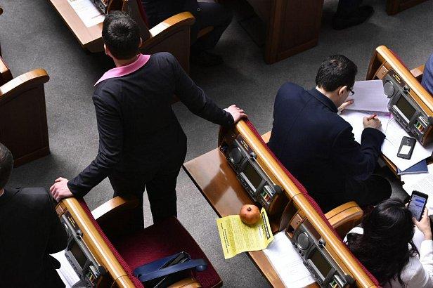 фото: Надежда Савченко принесла в Раду гранат