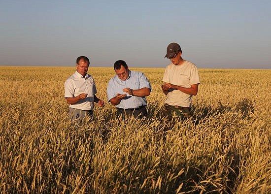Австрийцы заявили о готовности инвестировать украинских аграриев