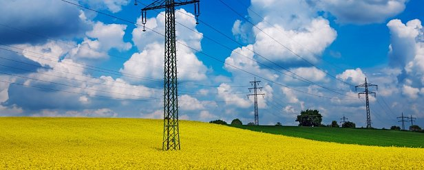 Эксперт объяснил в чьих интересах Герус пытается перенести новый рынок электроэнергии