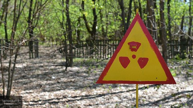 Фото - Назван уровень радиации в зоне ЧАЭС