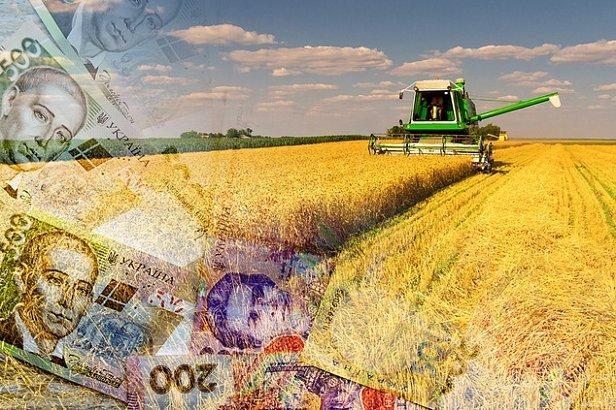 Кредиты и возмещение расходов: Кабмин решил поощрить украинских аграриев