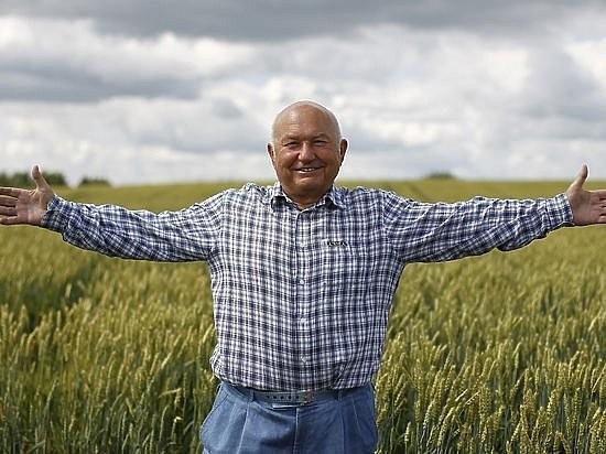 В Украине фермеров приравняли к предпринимателям: подробности