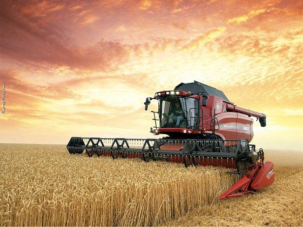 Украина побила прошлогодний рекорд экспорта зерновых