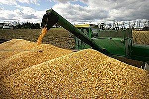 Аграрии оценили возможности китайского рынка