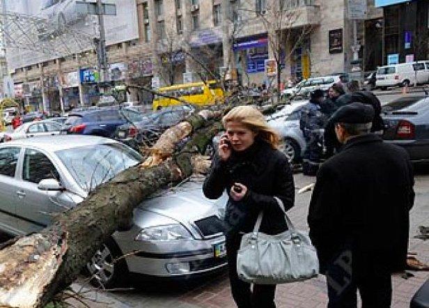 фото - погода в Украине