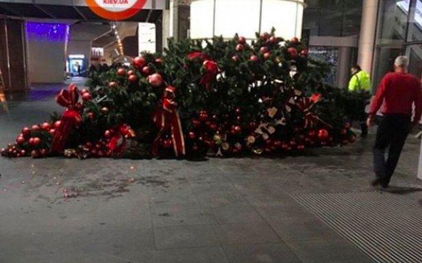 фото - упала елка