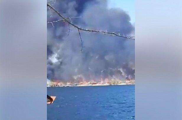 фото - пожар дачного городка в Херсоне
