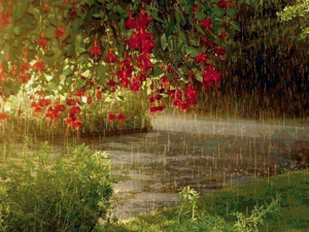 Сильные дожди: синоптики уточнили прогноз погоды