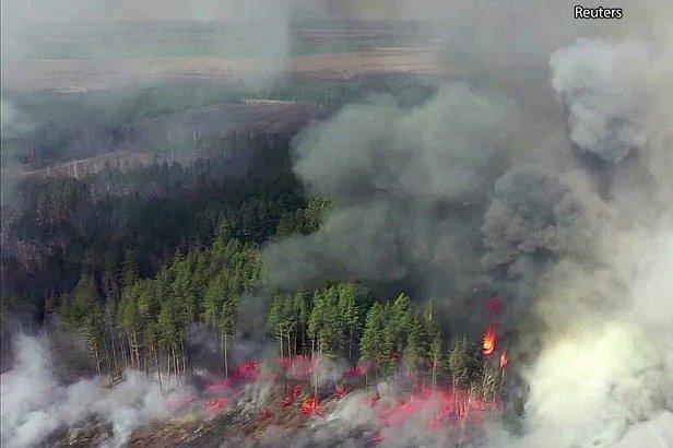 В Чернобыльской зоне снова горит лес
